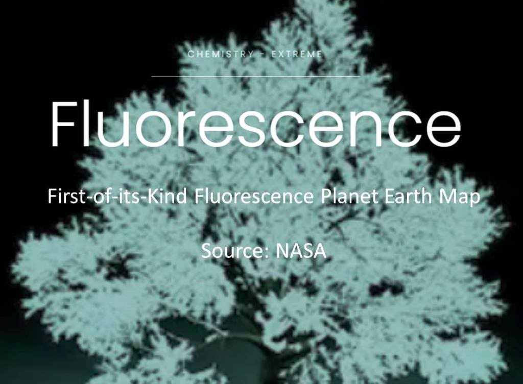 https://www.nasa.gov/topics/earth/features/fluorescence-map.html