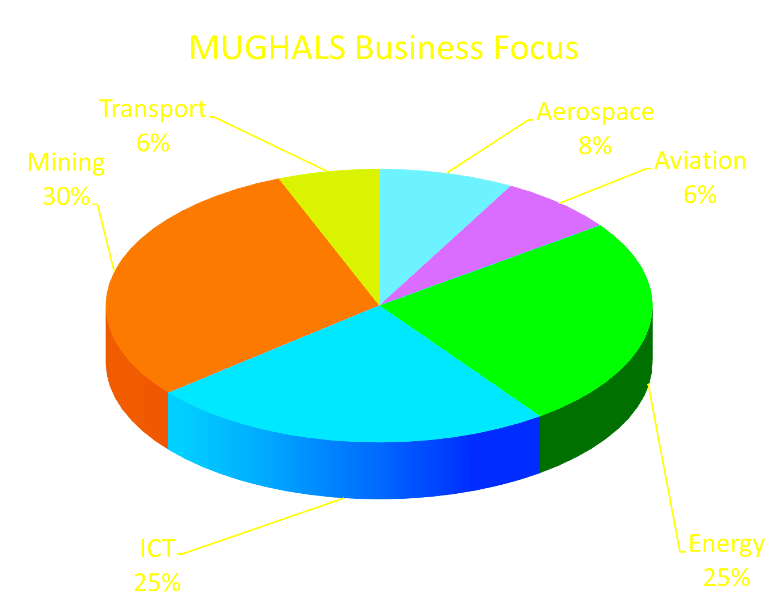 http://www.themughals.net/initiatives-1